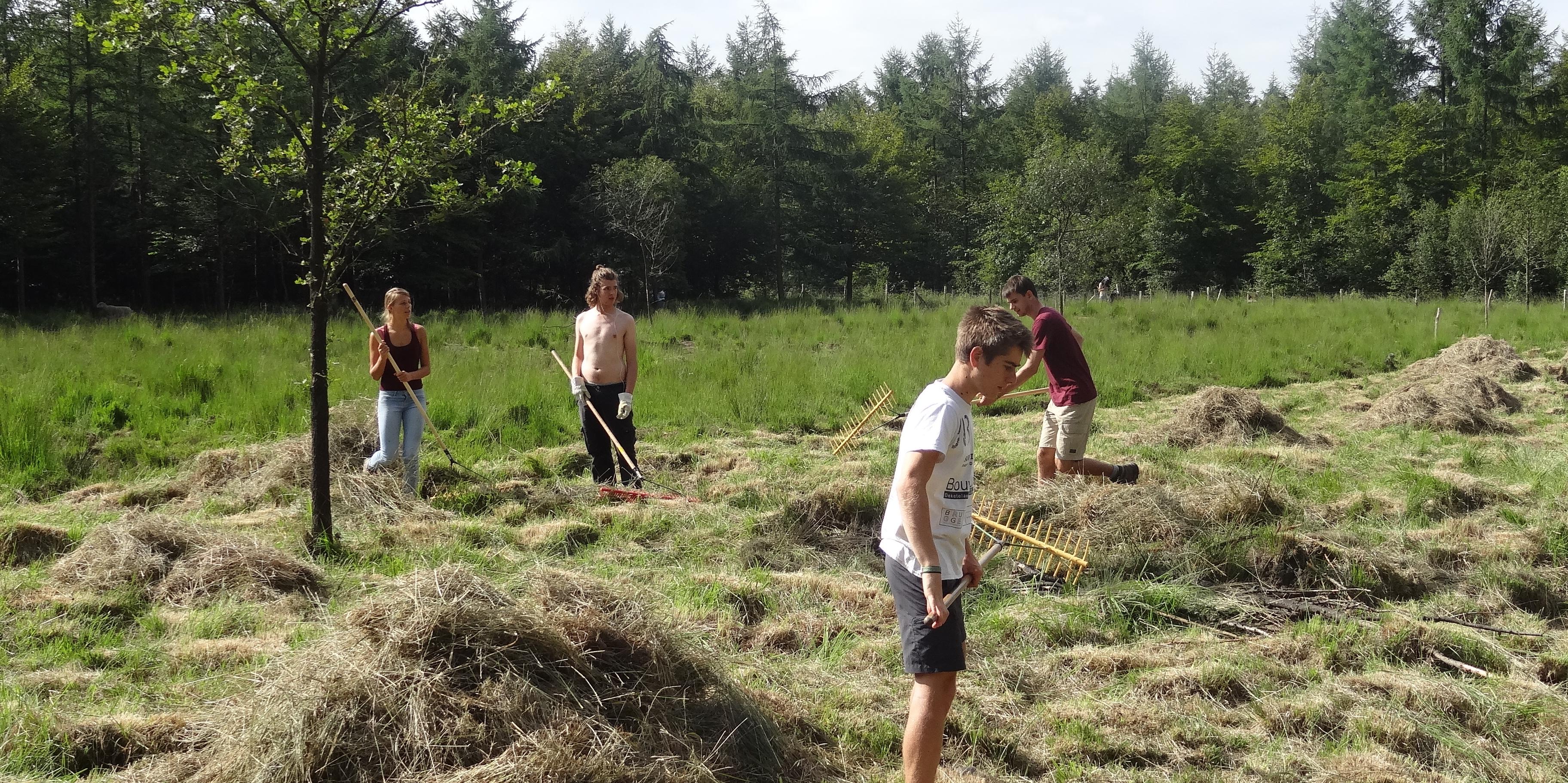 Werkweekend Vagevuurbossen 3-4 september