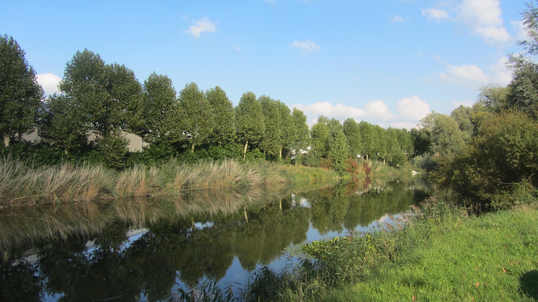 Natuurpunt betreurt dempen oude Leie-arm voor aanleg parking in Wielsbeke