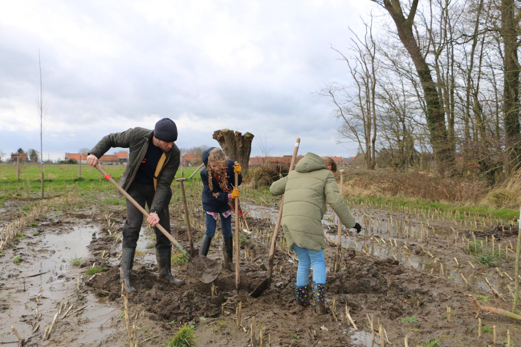 Basisschool De Linde plant Gallatasbosje aan in Doomkerke